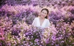 Vườn hoa thạch thảo trong phố hút khách