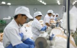 Nhựa An Phát Xanh (AAA) mua xong 5 triệu cổ phiếu NHH, thành cổ đông lớn của Nhựa Hà Nội