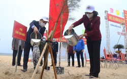 Phó Chủ tịch nước phát động Tết trồng cây ở Quảng Bình
