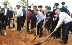 Thủ tướng: Trồng cây xanh để thúc đẩy quốc kế dân sinh