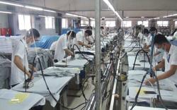 Trung tâm DVVL TPHCM: Đảm bảo người lao động nhanh chóng nhận được trợ cấp bảo hiểm thất nghiệp