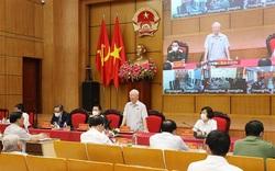 Tổng Bí thư Nguyễn Phú Trọng: Đất nước bình yên mới có điều kiện phát triển
