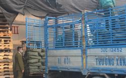 Kinh doanh trên 9 tấn nầm lợn không rõ nguồn gốc, đối tượng bị xử phạt gần 100 triệu đồng