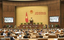 Nhật ký nghị trường: Bắt đầu quy trình miễn nhiệm Thủ tướng Chính phủ