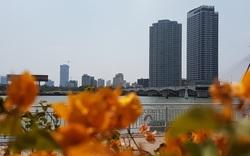 Đà Nẵng: 17 dự án nhà ở thương mại cho phép người nước ngoài được quyền sở hữu