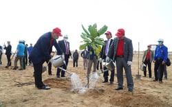 Chính thức phê duyệt Đề án trồng 1 tỷ cây xanh