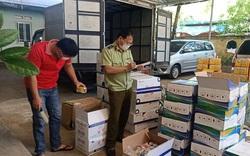 Hợp tác ngăn chặn và xử lý hành vi vi phạm trong sản xuất, kinh doanh phân bón, thuốc bảo vệ thực vật