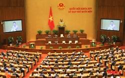 Triển khai nhiệm vụ tại Nghị quyết 161/2021/QH14 của Quốc hội