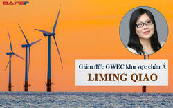 Giám đốc GWEC khu vực châu Á đề xuất cơ chế giá FIT mới cho điện gió để không gặp khó như điện mặt trời