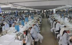 Quảng Bình giải quyết việc làm cho hàng chục nghìn lao động