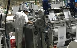 Bạc Liêu: Hàng chục nghìn lao động được hỗ trợ việc làm