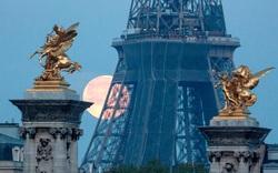 EU cấp chứng chỉ Covid kỹ thuật số để đón khách quốc tế ngoài khối