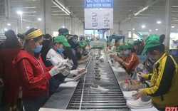 Thanh Hoá nỗ lực giải quyết việc làm cho hàng chục nghìn người lao động