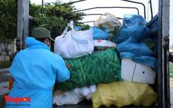 Ấm áp những chuyến xe nông sản nghĩa tình hỗ trợ Đà Nẵng