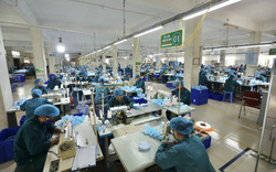 Hải Phòng: Nhiều giải pháp để hỗ trợ người lao động hưởng trợ cấp Bảo hiểm thất nghiệp trong giai đoạn dịch Covid-19
