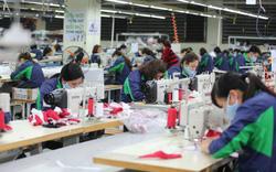 Thủ tướng lập Tổ công tác đặc biệt tháo gỡ khó khăn cho người dân, doanh nghiệp