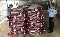 Xử phạt hộ kinh doanh bày bán 25 tấn phân bón không phù hợp với quy chuẩn kỹ thuật