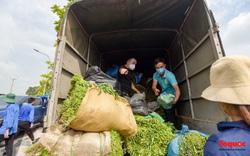 Hàng chục tấn rau củ quả, nhu yếu phẩm của bà con Bắc Giang ủng hộ Thủ đô Hà Nội