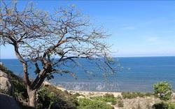 Thêm 2 khu dự trữ sinh quyển của Việt Nam được UNESCO công nhận