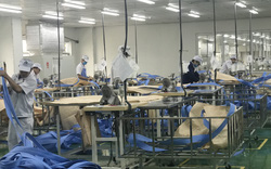 Hỗ trợ người lao động, người sử dụng lao động bị ảnh hưởng bởi dịch COVID-19 từ Quỹ Bảo hiểm thất nghiệp