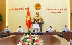 Phê chuẩn đại biểu Quốc hội chuyên trách khóa XV TP Hà Nội và 3 tỉnh