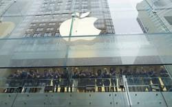Apple từng bừng lên kệ, Samsung ráo riết thu hồi