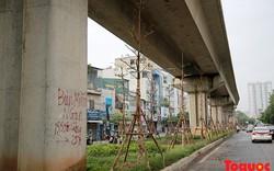 Công ty cây xanh: cây trồng dưới gầm đường sắt đô thị là bình thường