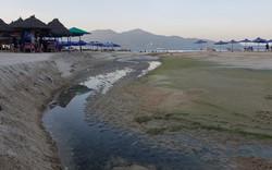 """Sở Xây dựng Đà Nẵng nói gì về """"bãi biển đẹp nhất bị đe dọa bởi ô nhiễm"""