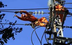 Đà Nẵng diễn tập sự cố mất điện trên diện rộng phục vụ APEC 2017