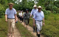 Thành lập khu bảo tồn loài và sinh cảnh voi Quảng Nam