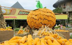 """""""Check in"""" Halloween mê hồn với các tiểu cảnh được tạo từ hơn 10 tấn bí, ngô, táo tại Sun World Ba Na Hills"""