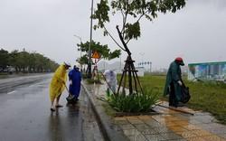 Người dân Đà Nẵng đội mưa ra đường dọn vệ sinh đón APEC