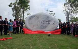 Rực rỡ Công viên APEC 2017 bên sông Hàn thơ mộng