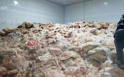 Kinh hoàng phát hiện gần 15 tấn phế phẩm động vật hôi thối chờ tiêu thụ