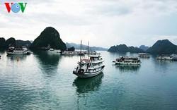Sẽ có wifi miễn phí và camera giám sát tại 17 điểm trên vịnh Hạ Long