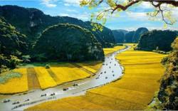 """Ninh Bình: Xây dựng tour du lịch chụp ảnh """"Mùa vàng Tam Cốc"""""""