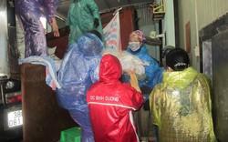 Tiêu hủy 275 tấn hải sản bị nhiễm độc tại Hà Tĩnh