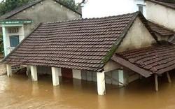 Bình Định: Miễn học phí cho học sinh bị thiệt hại do lũ lụt
