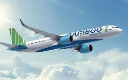 Cục Hàng không yêu cầu Bamboo Airways ngăn chặn trang web giả mạo