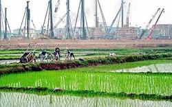 Chuyển mục đích sử dụng đất cho tỉnh Yên Bái
