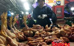 Gà không kiểm dịch, đông lạnh tràn ngập chợ đầu mối