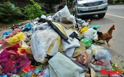 Hà Nội: Thị xã Sơn Tây nồng nặc mùi rác