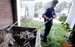 Sau phản ánh của Báo Tổ Quốc: Khu đô thị Văn Phú nhanh chóng dọn dẹp biệt thự chứa bơm kim tiêm