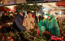 Chợ hoa lớn nhất Hà Nội nhộn nhịp những ngày giáp Tết