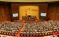Thông tin mới nhất về ba đặc khu kinh tế Vân Đồn, Bắc Vân Phong và Phú Quốc