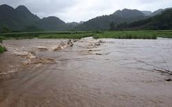 Thanh Hóa, Nghệ An thiệt hại nặng nề sau bão Sơn Tinh
