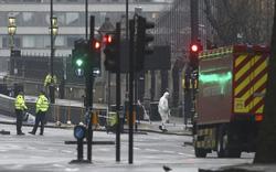 Hé lộ về bảy người bị bắt sau tấn công khủng bố London