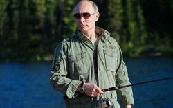 Giữa 'bão' cấm vận, Tổng thống Putin thản nhiên câu cá Siberia