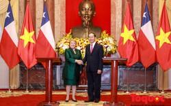 Việt Nam - Chile tăng cường quan hệ hợp tác toàn diện