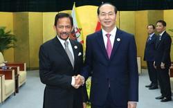 Chủ tịch nước mong muốn Brunei quan tâm tới hợp tác dầu khí với Việt Nam